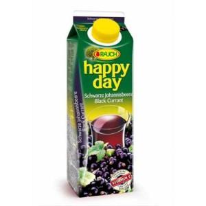 Džús HAPPY DAY 1l čierne ríbezle 25%